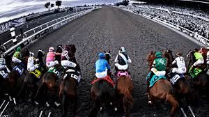 best online horse racing betting sites